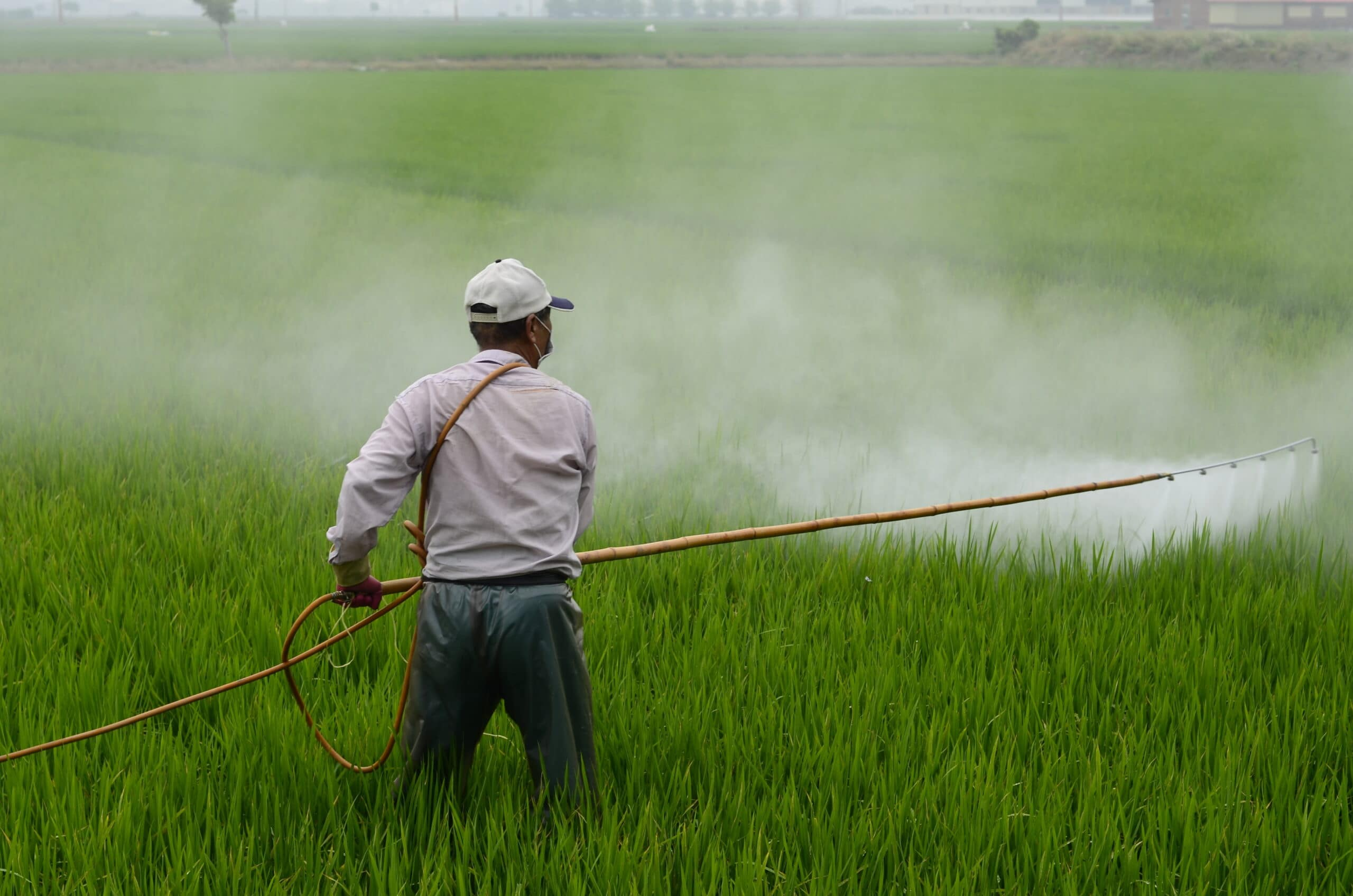 Paraquat sprayer being exposes to harmful chemicals